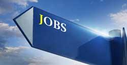 Job-Banner